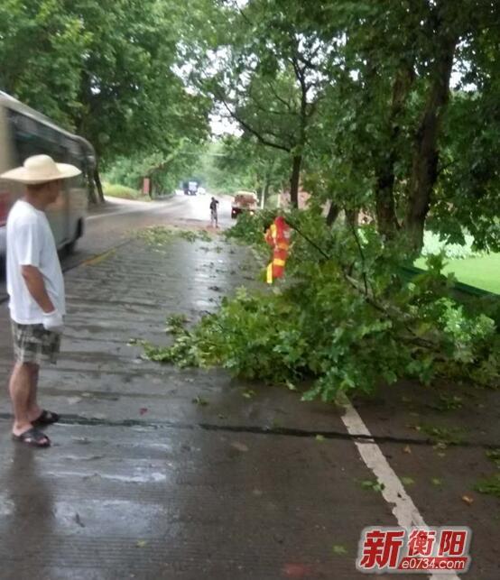 衡山县突遇暴风雨袭击 养护工清障护路忙
